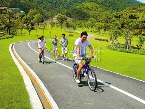 莱芜市雪野旅游区乡村旅游发展规划