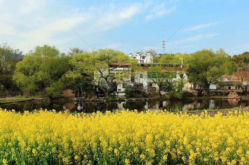 千岛湖项目-2.jpg