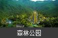 广东韶关·帽子峰森林王国