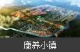 安徽亳州·芍药养生小镇