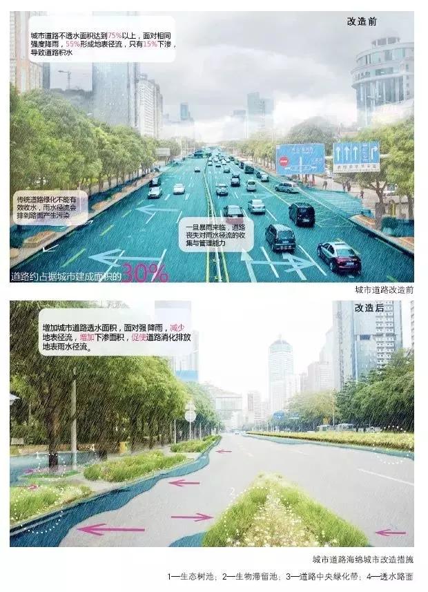 城市道路运用海绵城市设计策略,在收集利用道路雨水径流,污染排放等
