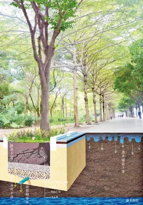 图解| 海绵城市设计策略下篇(道路,公园绿地,硬质场地