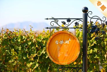 葡萄酒庄规划专题