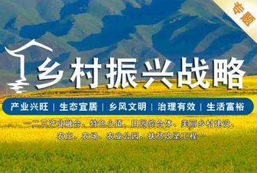 乡村振兴战略专题——是十九大与旅游第一关联战略