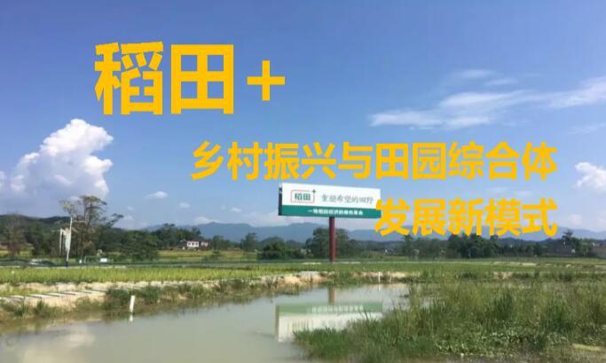 "IP:""稻田+""田园综合体"