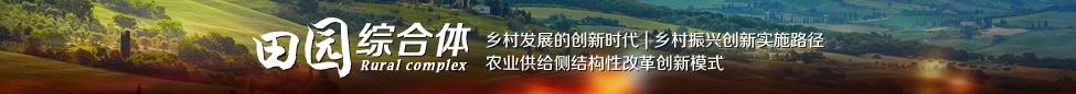 专题:田园综合体