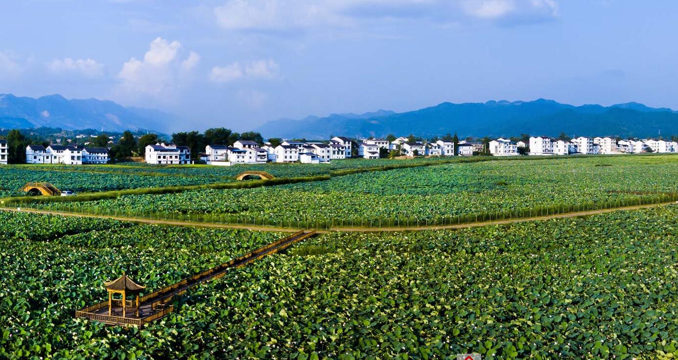 从乡村旅游到市民农庄