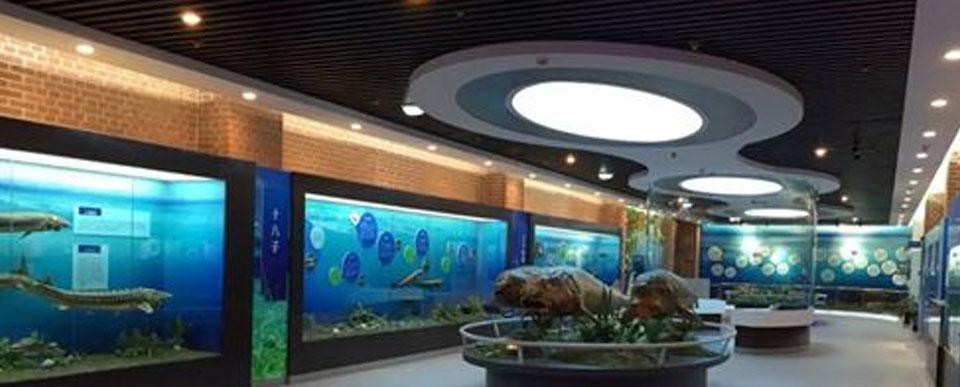 黑龙江抚远·鱼文化博物馆