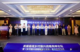 林峰:县域乡村振兴规划实施探索