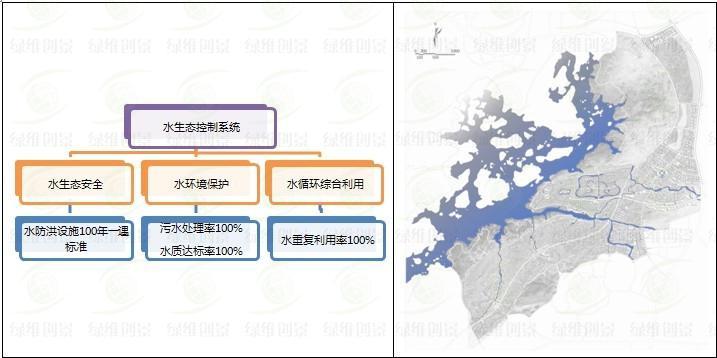 水生态系统结构图